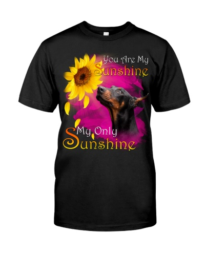 Doberman-My Sunshine