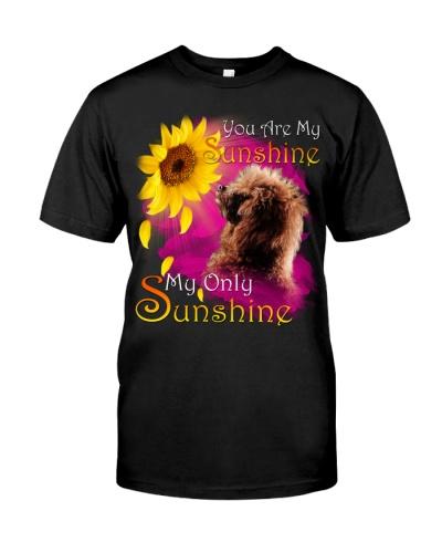 Poodle-My Sunshine