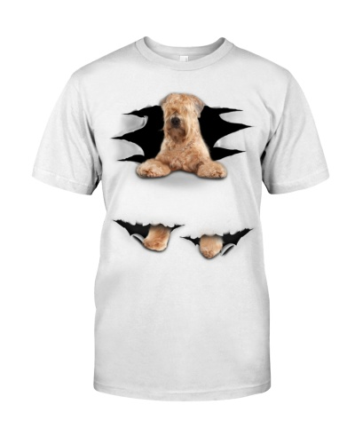 Soft Coated Wheaten Terrier - Torn03