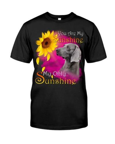 Weimaraner-My Sunshine