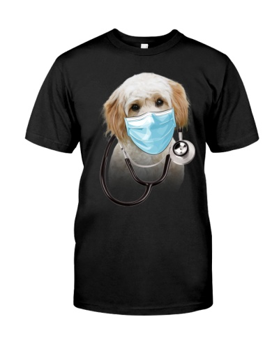 Cavachon-Doctor Dog