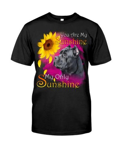 Cane Corso-My Sunshine