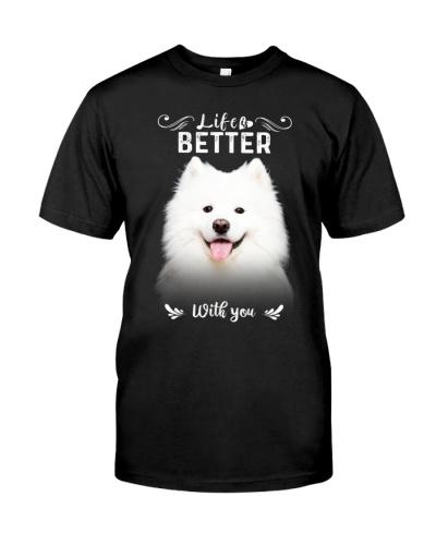 Samoyed - Better