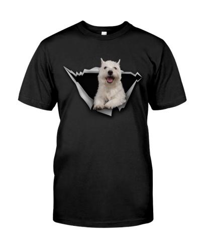 West Highland White Terrier - Torn