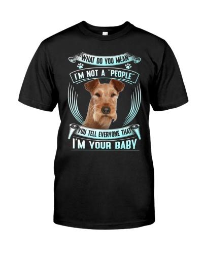 Irish Terrier-Your Baby