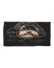 Tibetan Terrier-Hole Crack Cloth face mask front