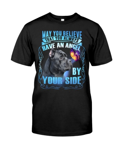 Cane Corso-May You Believe
