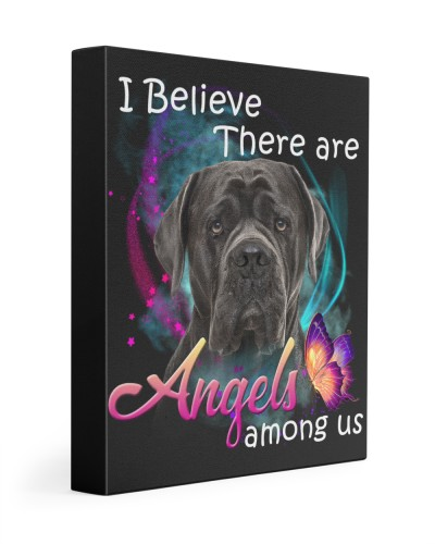 Cane Corso-03-Canvas Angels