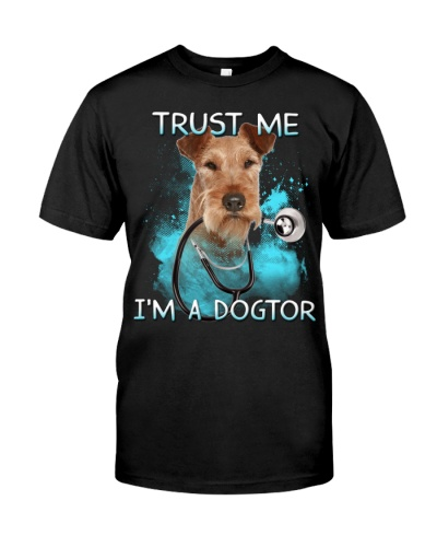 Irish Terrier-Dogtor