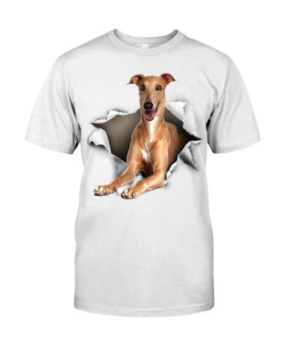 Greyhound-Italian - Torn02