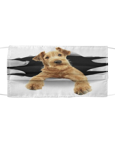 Irish Terrier-Face Mask-Torn03