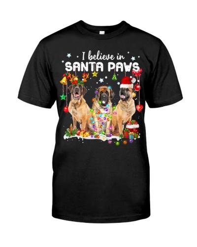 English Mastiff-Believe-Paws