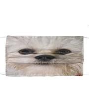 Sheri Spirt Cloth face mask front