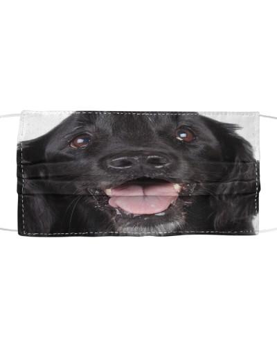 Flat Coated Retriever-Face Mask