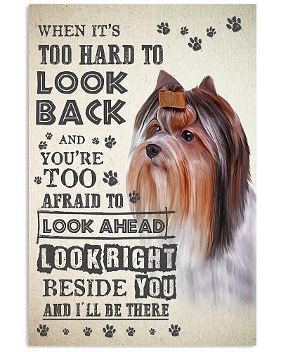 Yorkshire Terrier - Look Back