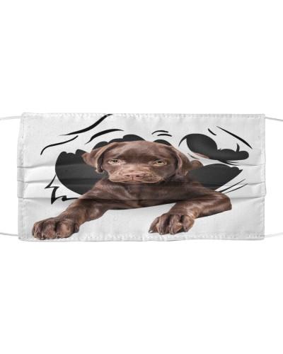 Labrador-Chocolate-Face Mask-Torn07