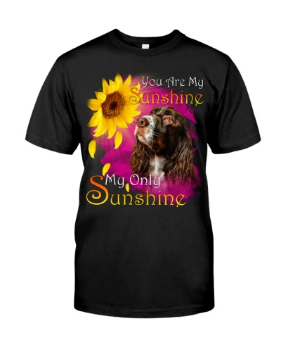 English Springer Spaniel-My Sunshine