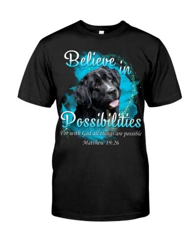 Newfoundland-02-Believe In Possibilities