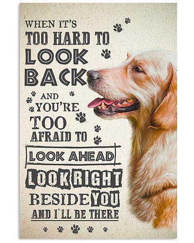 Golden Retriever - Look Back