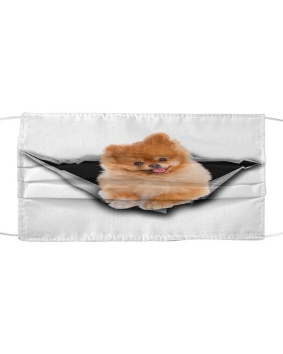 Pomeranian-Face Mask-Torn