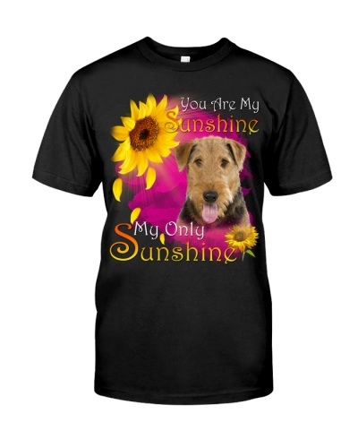 Airedale Terrier-Face-My Sunshine