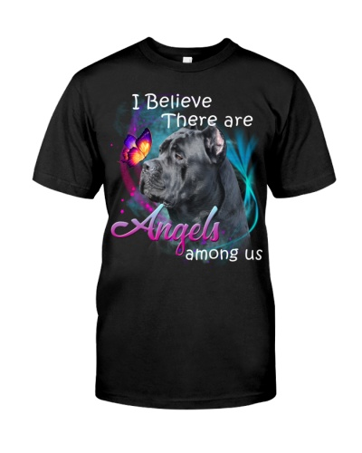 Cane Corso-Angels Among Us