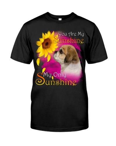 Pekingese-My Sunshine