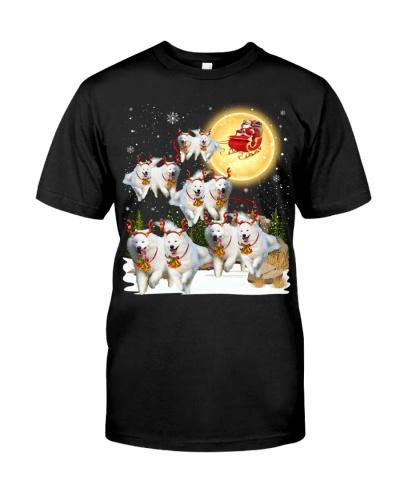 Samoyed-Santa Claus