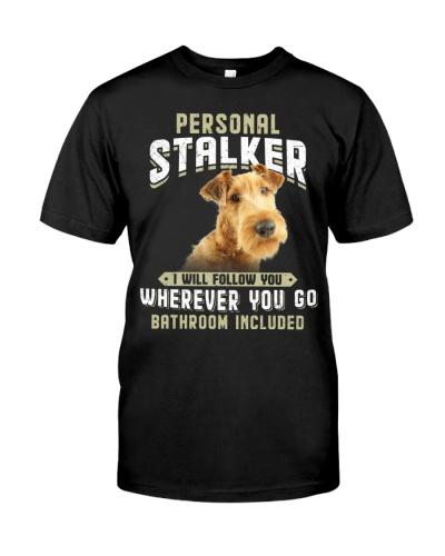 Irish Terrier - Stalker