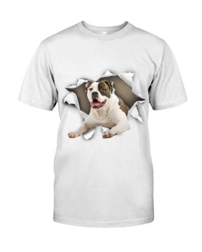 American Bulldog-02 - Torn02