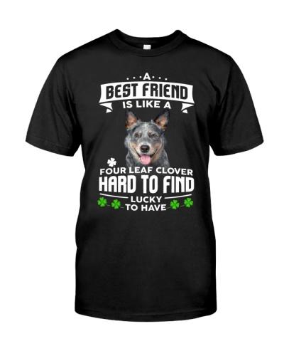 Australian Cattle-Best Friend