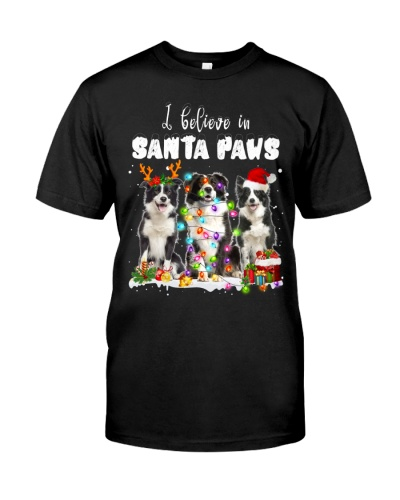 Border Collie-Santa Paws