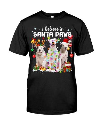 Dogo Argentino-Believe-Paws