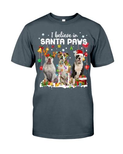 American Bulldog-Believe-Paws