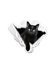 Black cat Crack Sticker - 8 pack (Horizontal) front