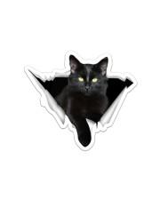 Black cat Crack Sticker - Single (Horizontal) front