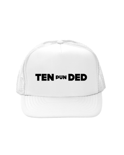 Pun Intended Truckers Hat