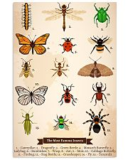 HD Insects Poster 11x17 Poster front