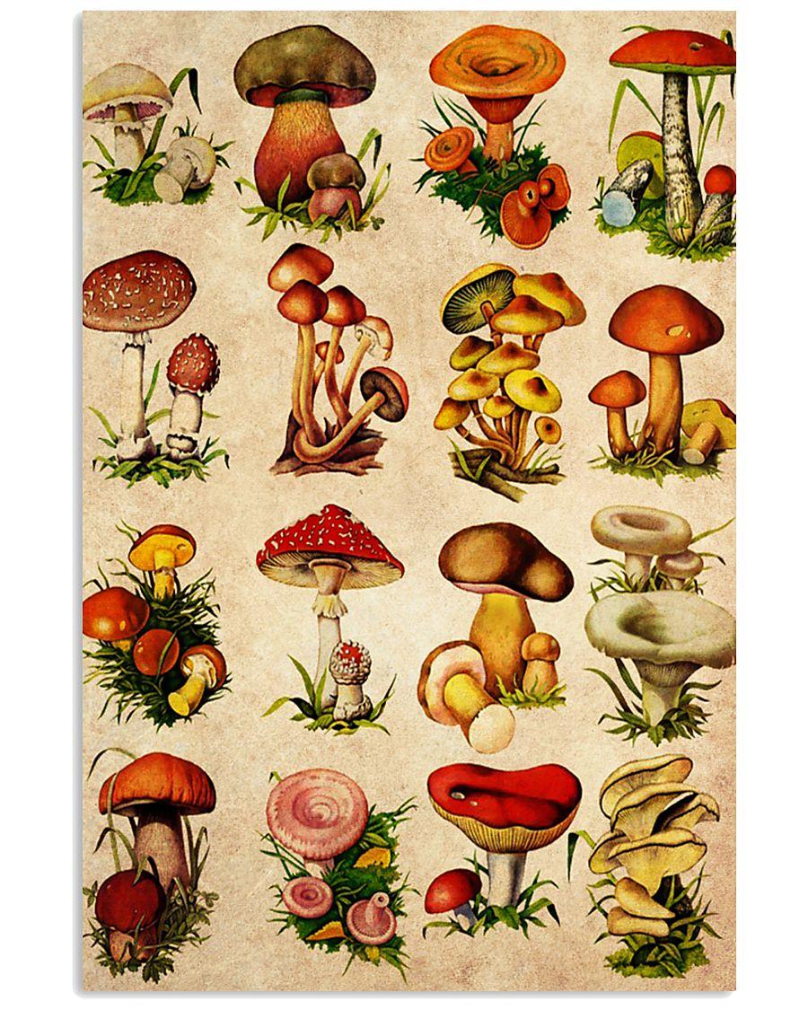 HD Type Of Mushroom 4 11x17 Poster