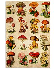 HD Type Of Mushroom 4 11x17 Poster front