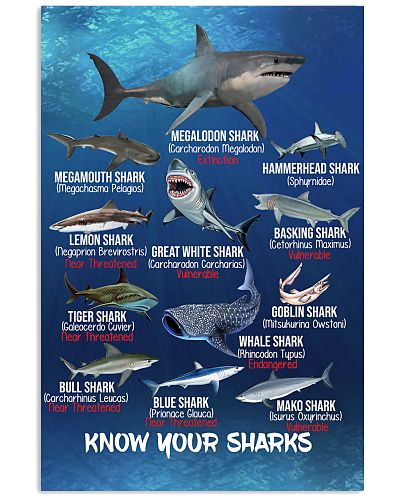 HD Know Your Sharks Poster