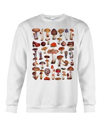 HD Fungi Mushroom