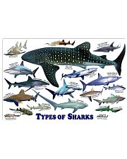 HD Types Of Sharks Poster 36x24 Poster front