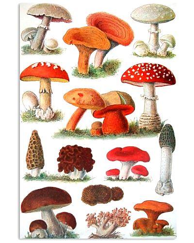 HD Type Of Mushroom 3