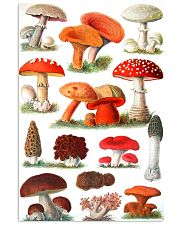 HD Type Of Mushroom 3 11x17 Poster thumbnail