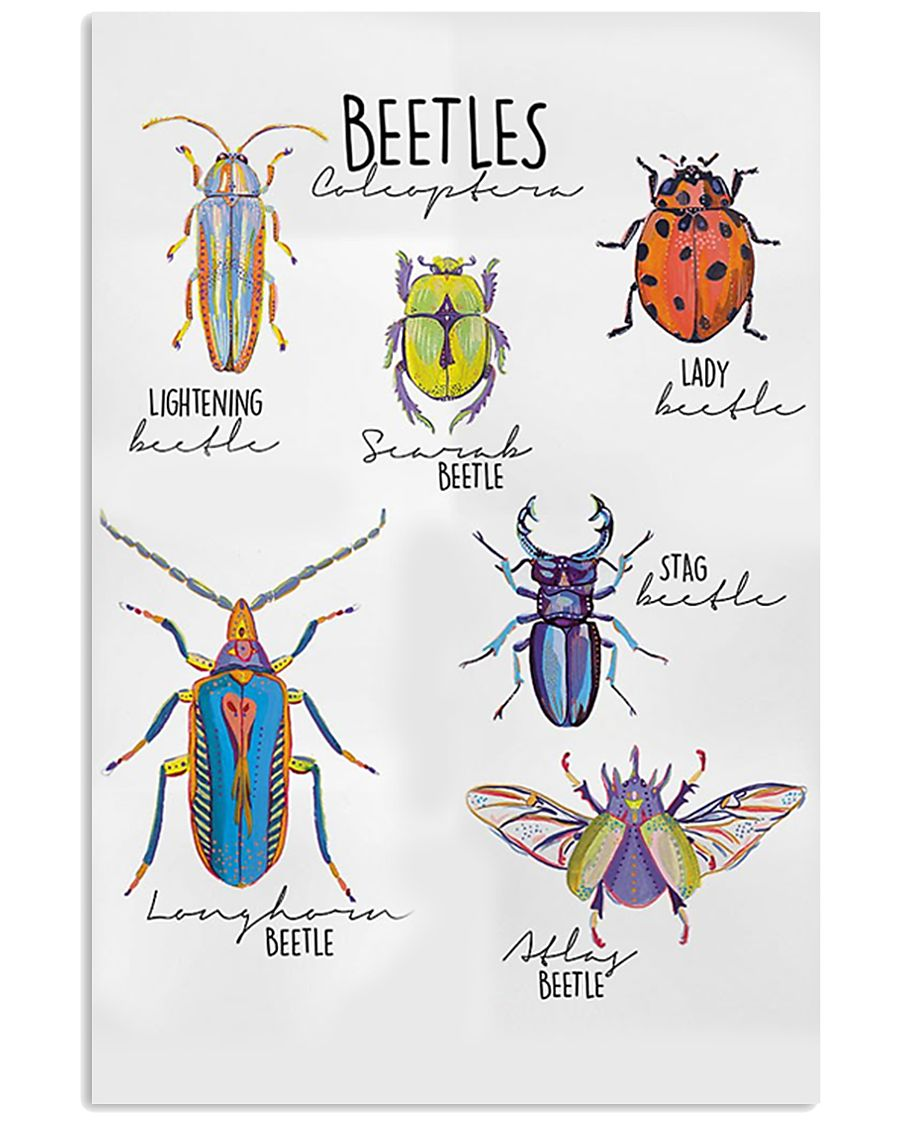 HD Beetles Poster 11x17 Poster