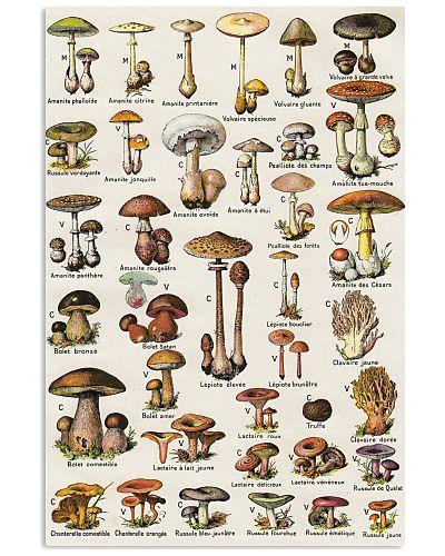 HD Type Of Mushroom 1