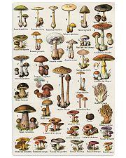 HD Type Of Mushroom 1 11x17 Poster thumbnail
