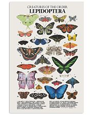 HD Lepidoptera Poster 11x17 Poster front