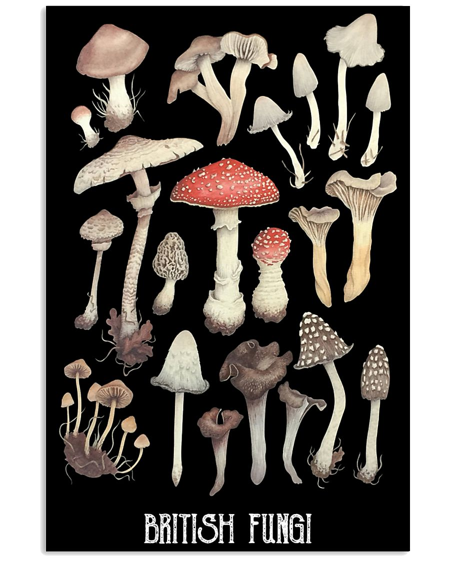 HD British Fungi Poster 11x17 Poster showcase
